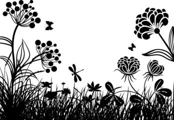 Meadow plants VII