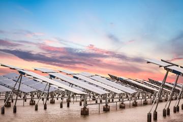 solar power farm at dusk Wall mural