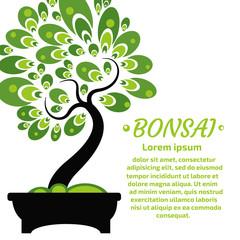 Bonsai Vector Background.