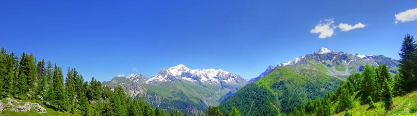Foto auf AluDibond Gebirge Panorama des Alpes en été