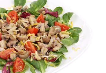 Close up of mushroom salad.