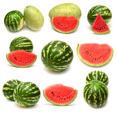 Collection of watermelon