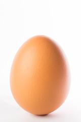 Fresh Farm Egg isolated