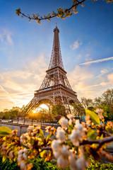 Wall Mural - Eiffel Tower against sunrise in Paris, France
