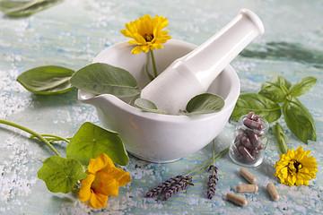 Fototapeta complements alimentaires à base de plante et fleurs médicinales obraz
