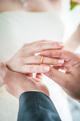 Hands of the groom and bride with wedding rings