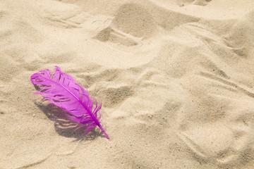Różowe pióro na piasku