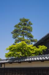 日本の伝統家屋
