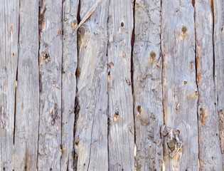 wooden wall background with log