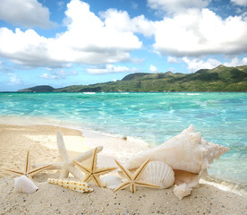 Sonne, Wasser, Strand .... Karibischer Traumurlaub :)