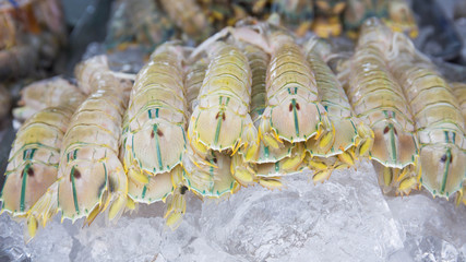Seafood market/Fresh seafood on ice. Shrimp, crayfish, clams and