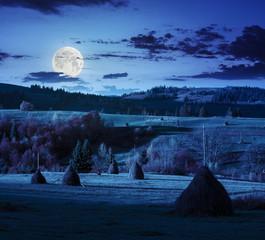 field near home at night