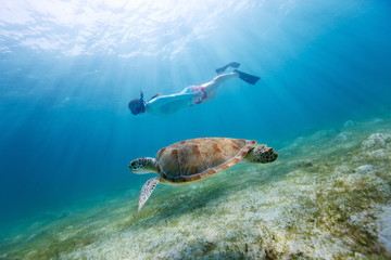 Fototapete - Young girl snorkeling with sea turtle