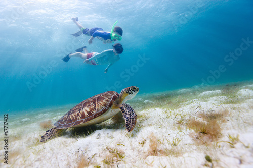 Fototapete Family snorkeling with sea turtle