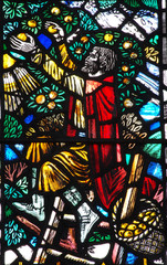 A man picking apples from a tree (stained glass window)