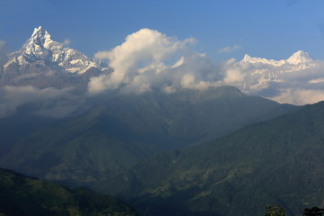 Mounts Machapuchare-Annapurna IV seen from Dhampus-Nepal. 0502