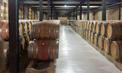 many wooden barrels in  winery