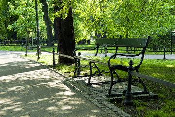 Bench in green park