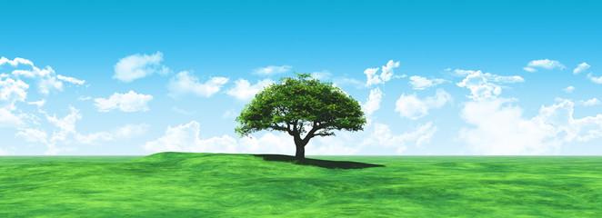 Aluminium Prints Blue Widescreen tree landscape