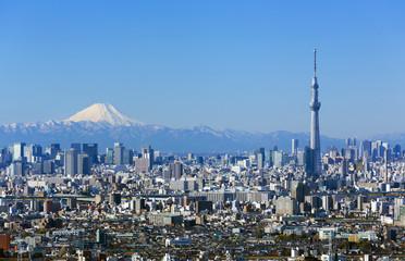 Foto op Aluminium Tokyo [東京都市風景]快晴青空・富士山と東京スカイツリー・東京都心の高層ビル群を一望