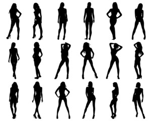 Silhouettes of beautiful and sexy girls, vector