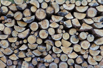 Stacked Logs Texture, Natural Background