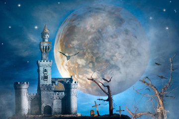 Castle fantasy
