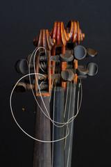 violin details 2