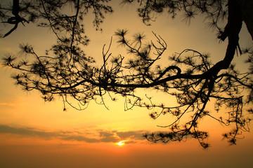 Sunrise ata the Phukradung Mountain thailand