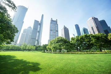 Fototapete - park in  lujiazui financial center, Shanghai, China