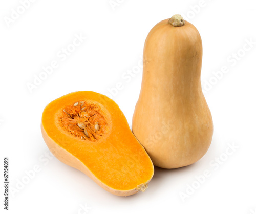 Butternut squash photo libre de droits sur la banque d 39 images image 67954899 - Courge dessin ...