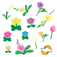 Set of flower on white background. EPS 8 File - no Gradients, no