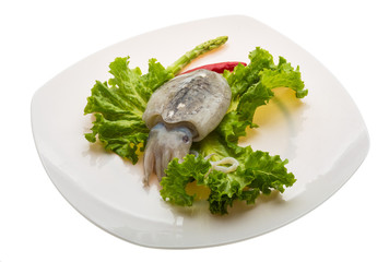Raw cuttlefish