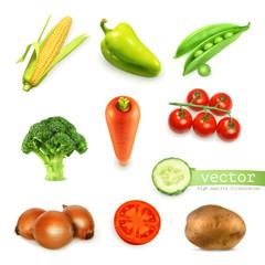 Set of vegetables, vector illustration