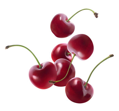 Group of flying cherries isolated on white background