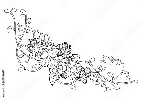 Flower Vine Line Drawing : Quot jasmine flower and vine line drawing vector stock image