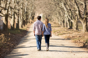rear view of couple holding hands walking in autumn countryside