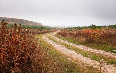 dirt autumn road