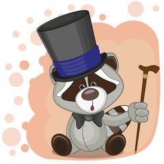 Raccoon in hat