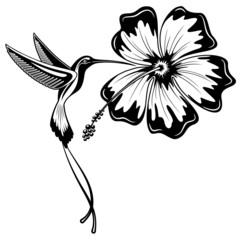 Self adhesive Wall Murals Draw Hummingbird and Hibiscus Tattoo