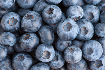 Blueberry texture background