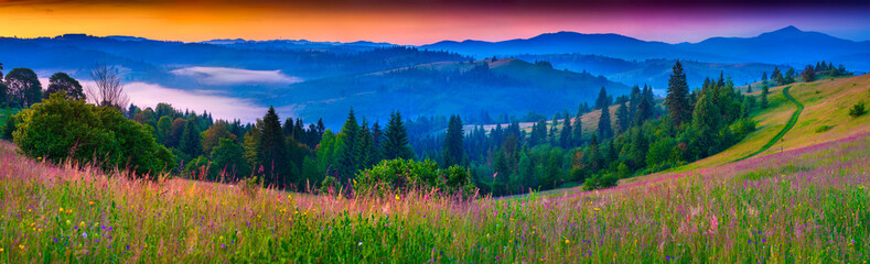 Wall Mural - Foggy summer panorama of the Carpathian mountains.