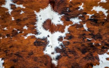 Wall Mural - Peau de vache