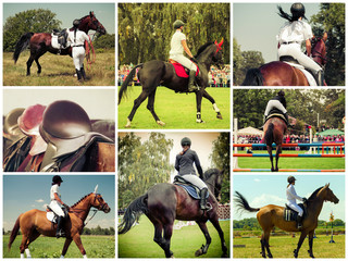 Collage of Rider on horse