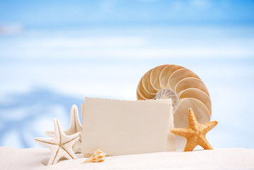 shells and starfish with blank retro photo on white sand beach,