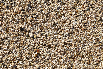 Natural small pebbles texture background