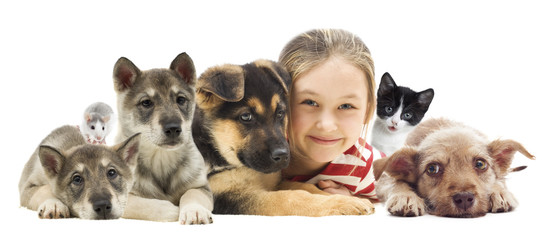 Fototapete - child and set pets