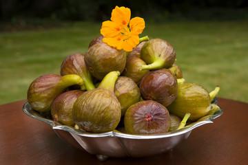 Figs in garden