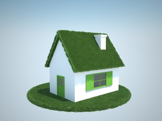 house with green gras roof