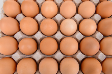 Eggs in paper tray close-up